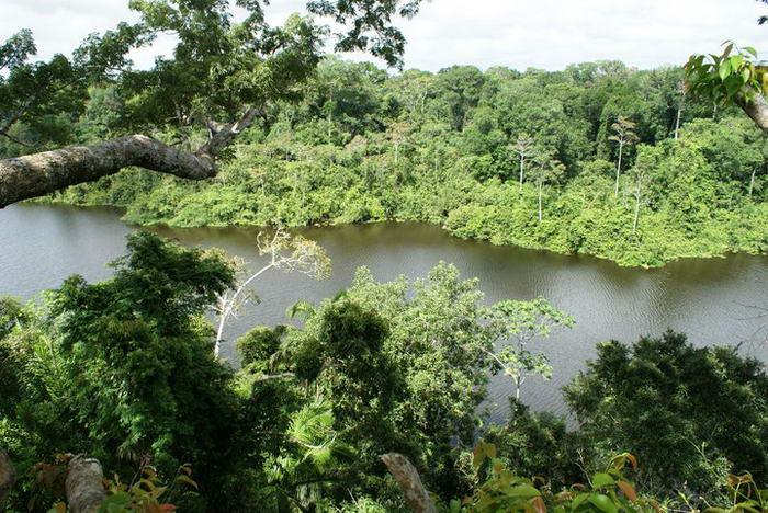 Colombia-Amazonas-26_Santiago-Echeverri
